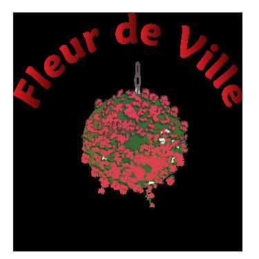 Hanging Baskets Bloembakken Fleur De Ville